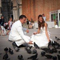 любовь и голуби :: Yana sky
