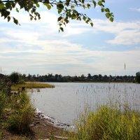 Онежское озеро :: Надежда Кашицина