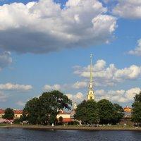 Петропавловская крепость :: Надежда Кашицина