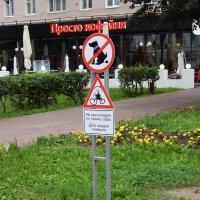 Интересный запрет :: Екатерина Харитонова