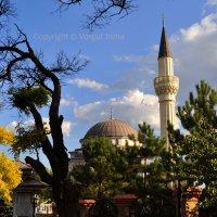 Турецкая мечеть :: Ирена Воргуль