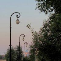 Аллея с фонарями :: Ирина Терентьева