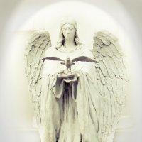 Задонск. ФОТОразведка. Ангел, сошедший с небес... :: Дарья Казбанова