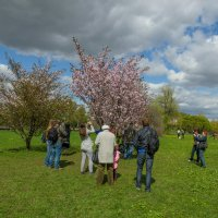 Весна2 :: Sergey Izotov