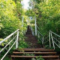 Старая лестница :: Сергей Беляев