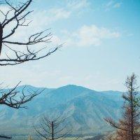 Перевал Чике-Таман :: Lina A.