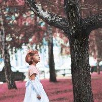 Даша в стране чудес :: Diakonov Maxim