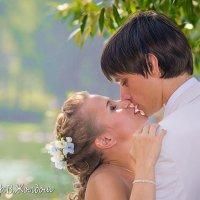 Поцелуй :: Владимир Жолдош