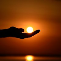 Солнышко в руках :: Алёна Я