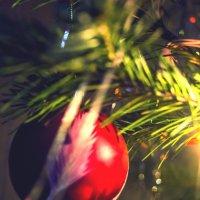 Новый год :: Юлия Бакалдина