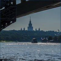 Вид на речку... :: Наталья Rosenwasser
