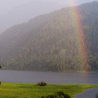 Горный Алтай...Телецкое озеро :: Жанна Мальцева