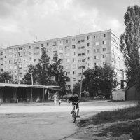 бн :: Илья Петров