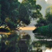 Река :: Алексей Попов