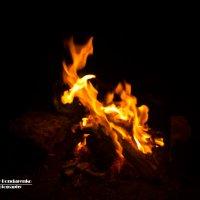 Языки пламени :: Андрей Бондаренко