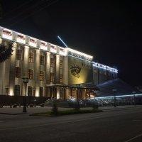 Ночь в музее :: Sergey Oslopov