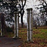 Остатки колоннады около дачи Ашкенази :: Александр Корчемный