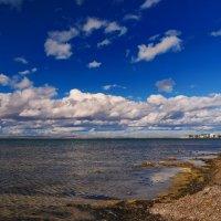 на озере Донузлав :: Андрей Козлов