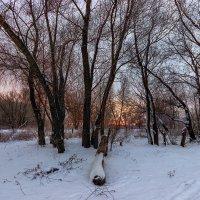 Утром, на восходе... :: Павел Петрович Тодоров