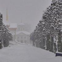 Коротко о погоде в Москве..)) :: Марина Волкова