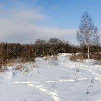 По снежной целине с ф/камерой :: Милешкин Владимир Алексеевич