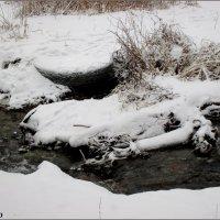 Ручей в зимнем парке :: Нина Бутко