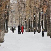 Зима. :: венера чуйкова