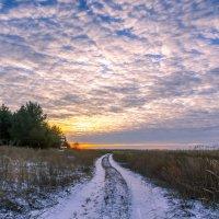 Зимний закат. :: Владимир M