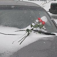 Всех с Днём Влюблённых! :: Владимир Драгунский