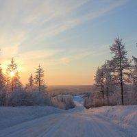На закате... :: Ирина Яромина