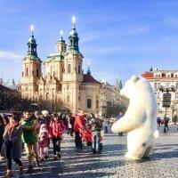 Медведи проснулись - дело к весне! :: Эльдар (Eldar) Байкиев (Baykiev)
