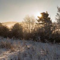 мороз и солнце. :: Ирина ...............