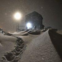 Следы на снегу... :: Витас Бенета