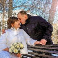 Зимние свадьбы.... :: Светлана Мизик