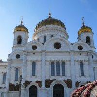 Храм Христа Спасителя :: Вера Щукина