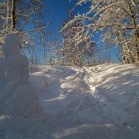 Снежная баба :: Андрей Дворников