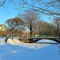 Зимнее солнце над милым мостиком... :: Sergey Gordoff