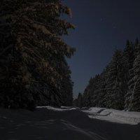 В лунном сиянии :: алексей чусовской