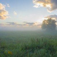 В свежести пойменного восхода. :: Igor Andreev