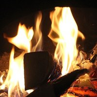 Зацветающие угольки расправляют в камине угрюмом огневые свои лепестки..... :: Tatiana Markova