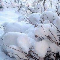 Cнежный февраль :: Елена Семигина