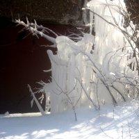 Царство снежной королевы :: Елена Семигина