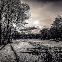Зимний пейзаж.......... :: Александр Селезнев