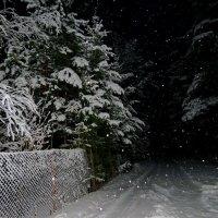 Снег кружится, летает, летает... :: Светлана