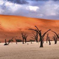 высохшее озеро Deadvlei, пустыня Намиб :: Георгий