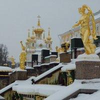 А  под снегом говорят..теплеее :: tipchik