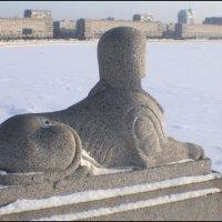 ледяное безмолвие :: galina bronnikova