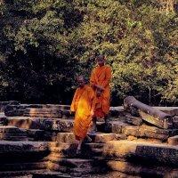 Монахи! :: Натали Пам