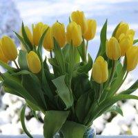 Желтые цветы ... :: Mariya laimite