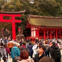 Kyoto :: Nina sofronova